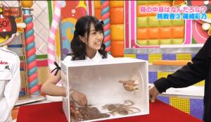 Fredag 24 november 2017 -Underligt Japansk TV og humor